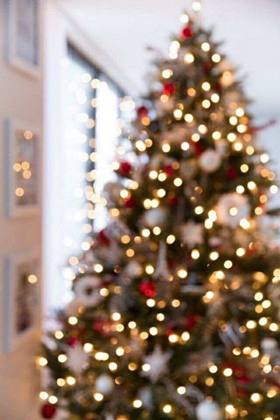 Aesthetic Christmas wallpapers iPhone with decorated Christmas tree and Christmas lights
