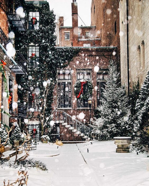 Aesthetic Christmas wallpaper with snow and spruces - white Christmas wallpaper
