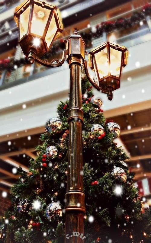 Aesthetic Christmas wallpaper for iPhone with Christmas tree and snow
