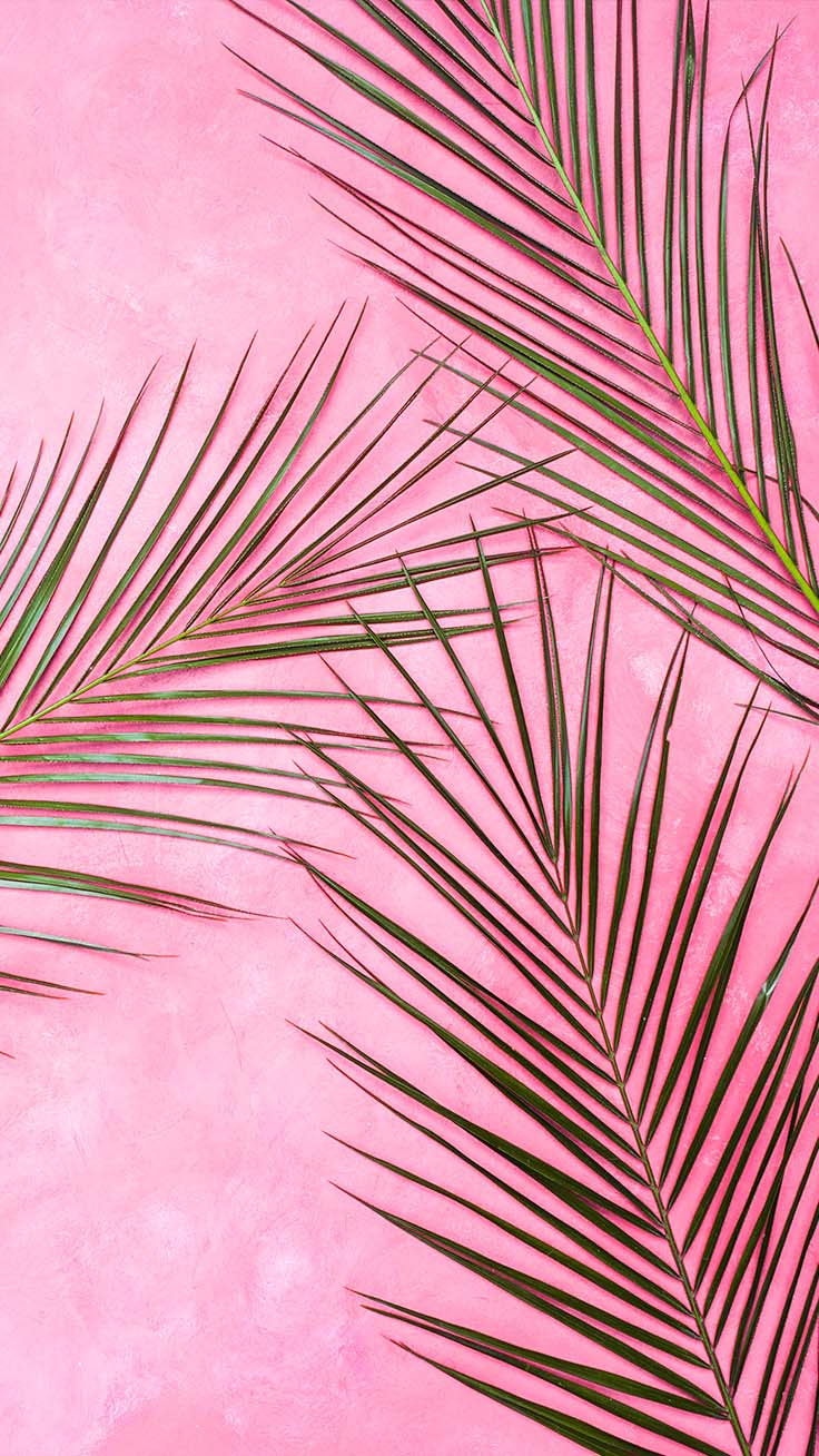 pretty backgrounds, pretty wallpapers iphone, nature wallpapers, pink wallpapers