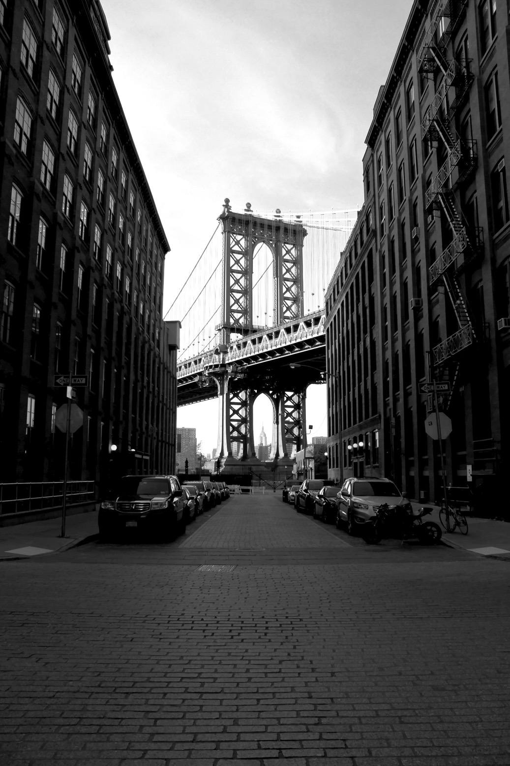 Black and white Dumbo photography