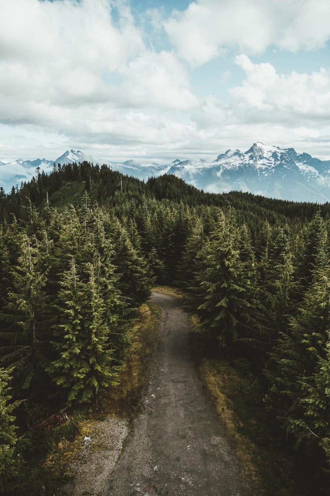 Mountain backgrounds for iPhone with forest