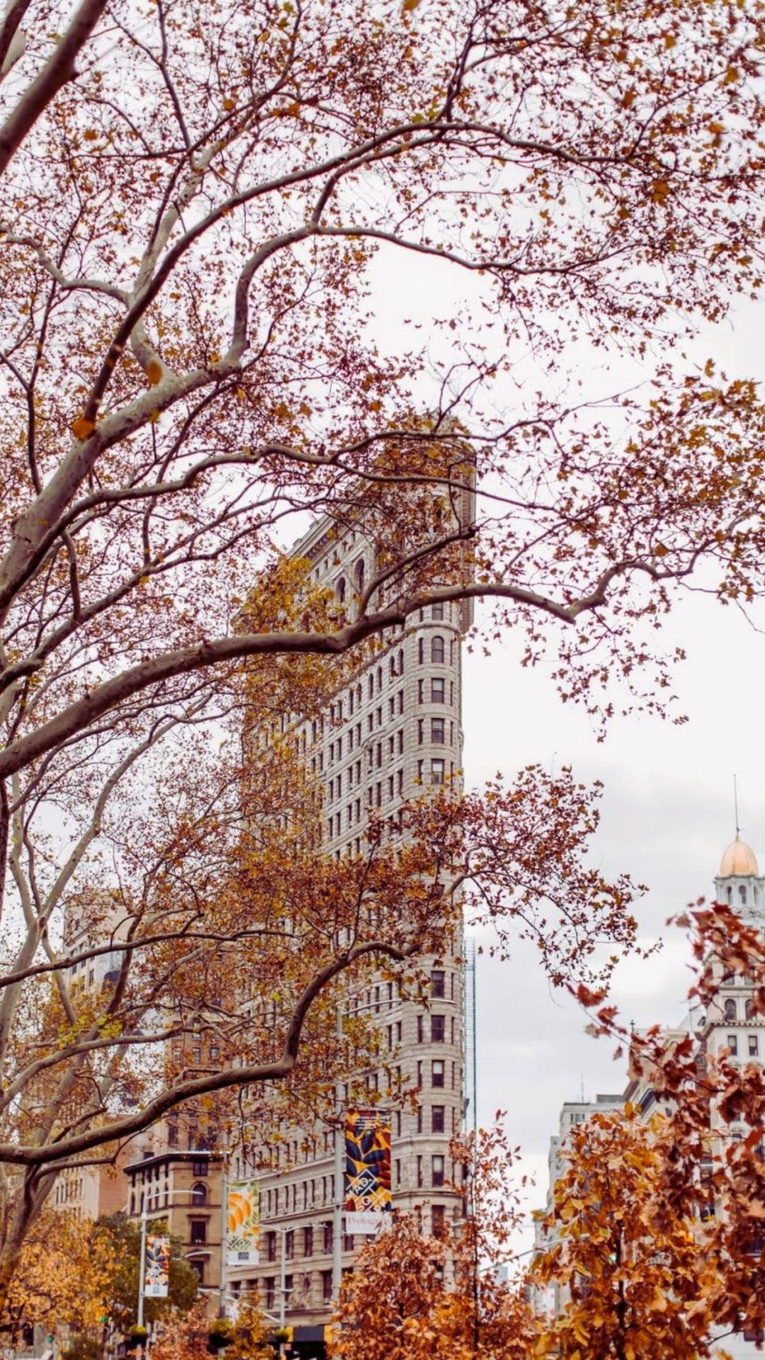 Fall in New York City wallpaper for iPhone