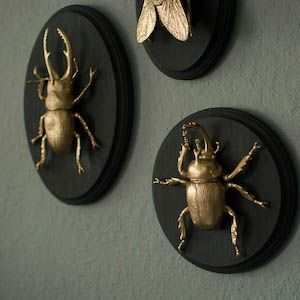 Unique crafts to make and sell: Gilded Insect Faux Taxidermy
