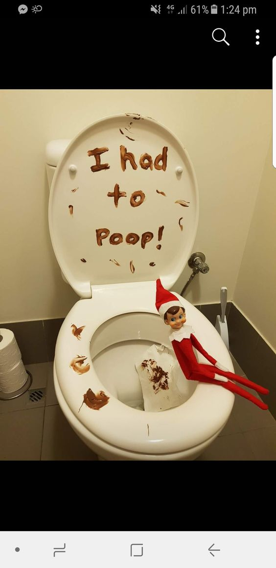 Naughty elf on the shelf ideas on the toilet with poop