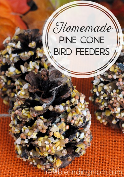 Homemade Pine Cone Bird Feeders