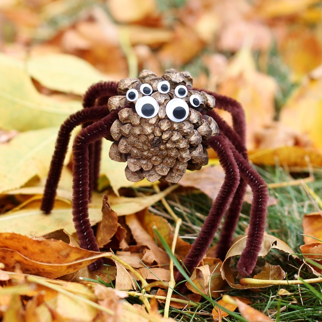 Easy Halloween crafts for kids: Pine Cone Spiders