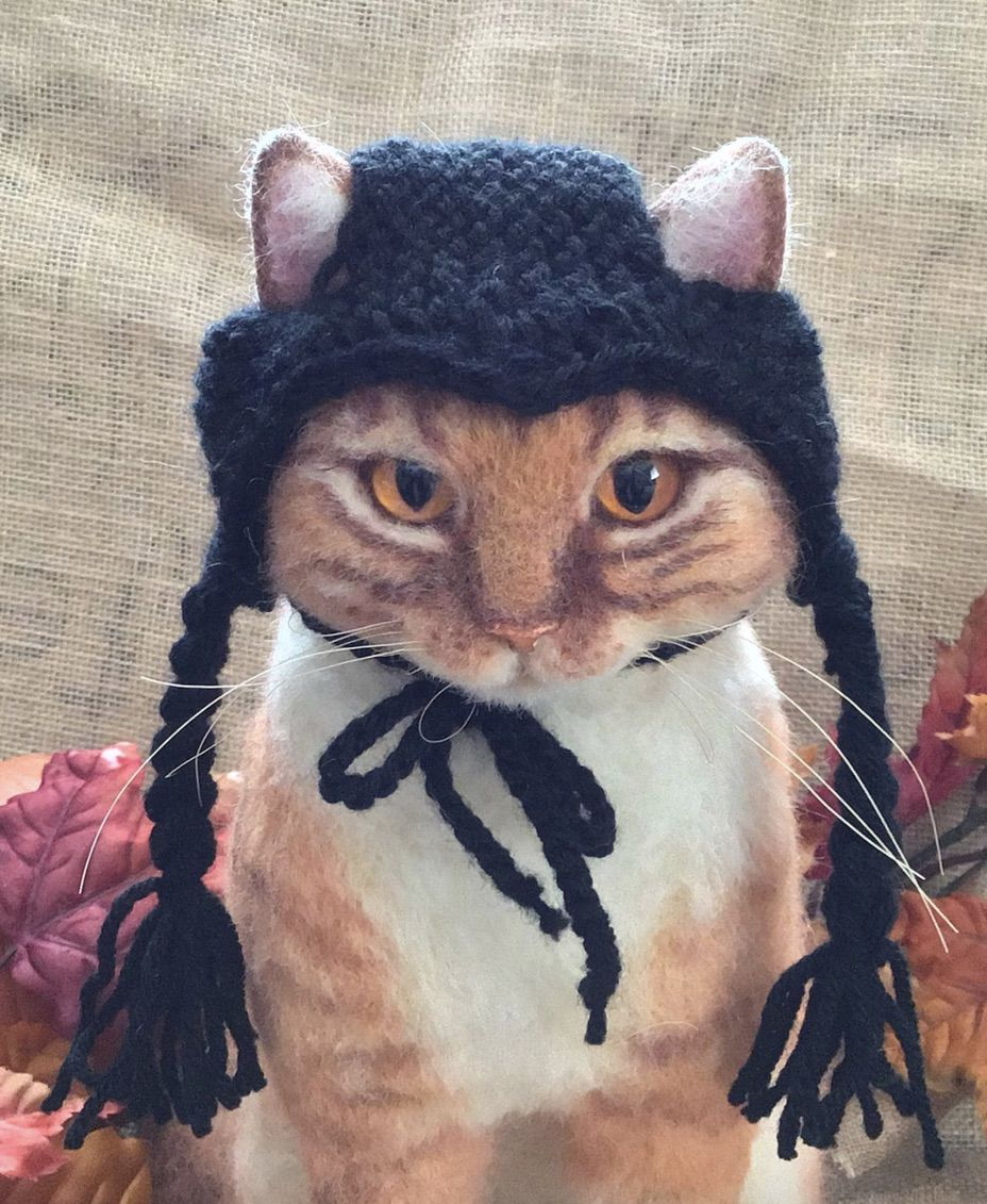 Wednesday Addams cat costumes for Halloween