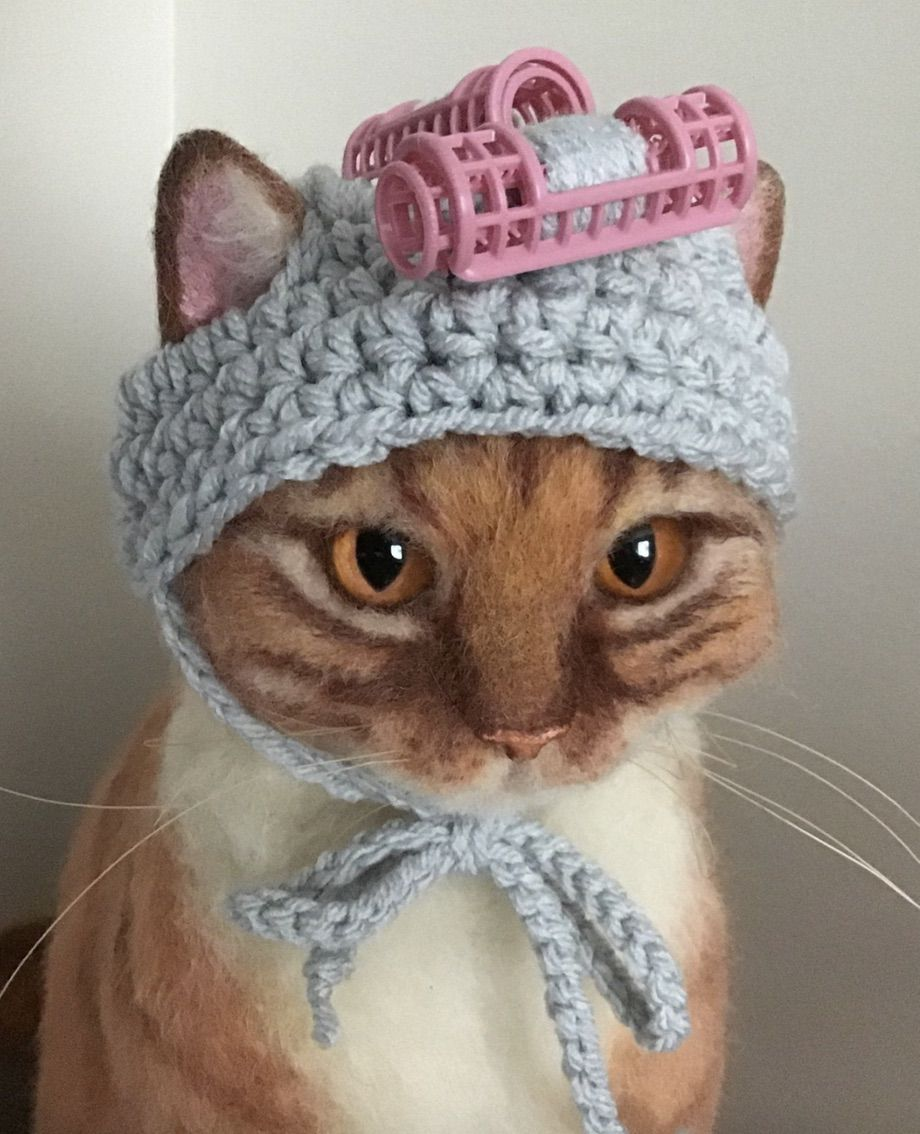 Cute cat Halloween costumes and ideas