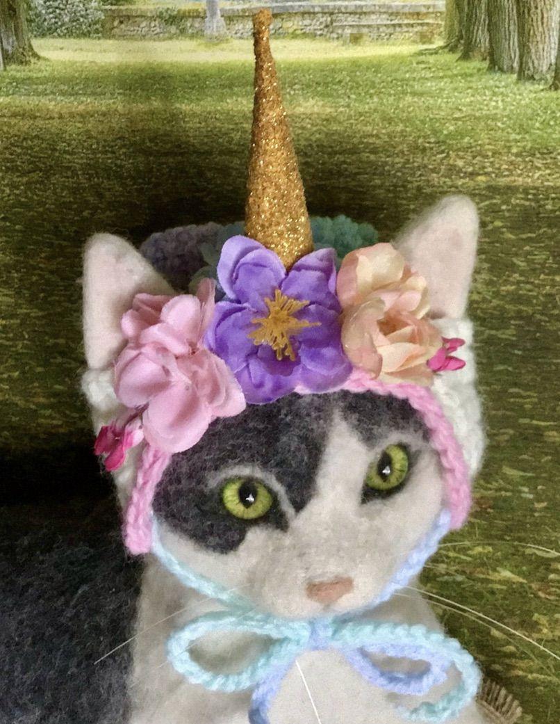 Unicorn cat costumes for Halloween