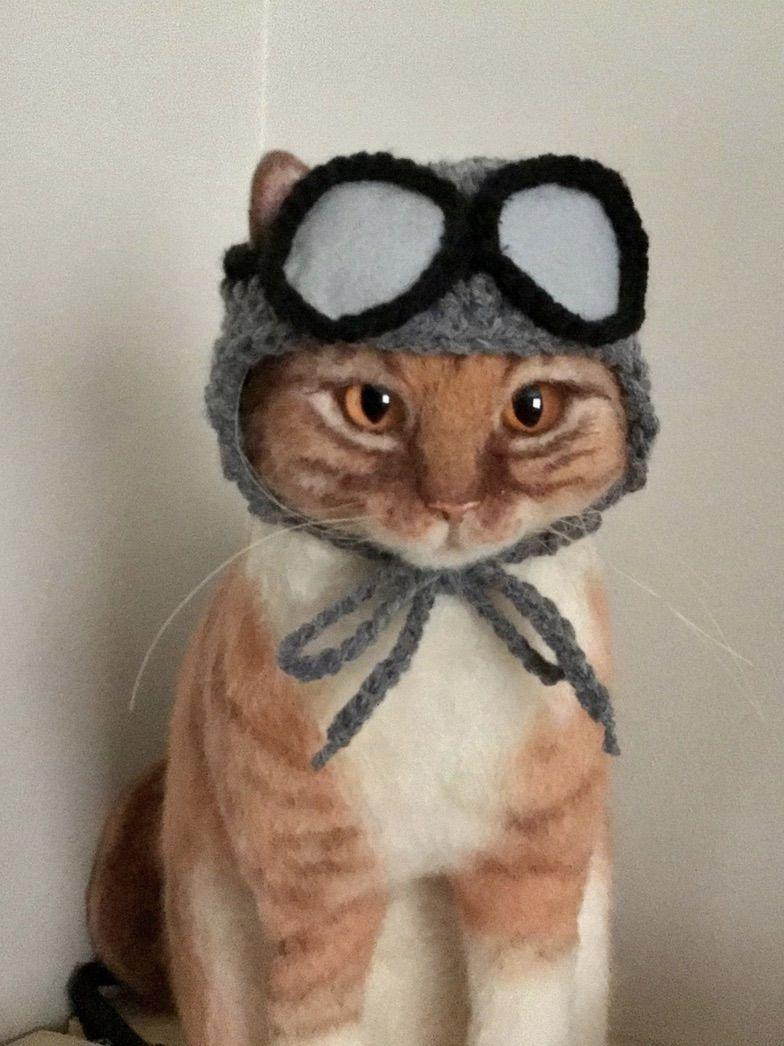 Aviator cat costume for Halloween and pilot cat Halloween costumes