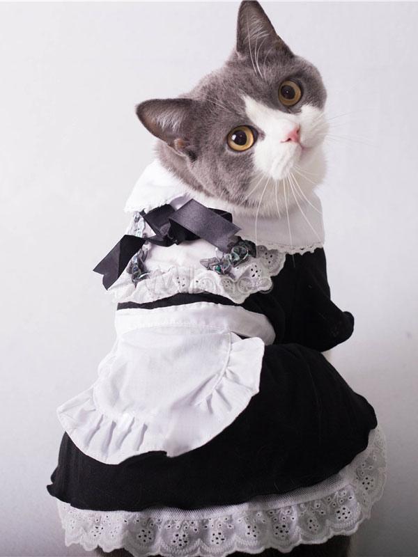 Cat maid costume