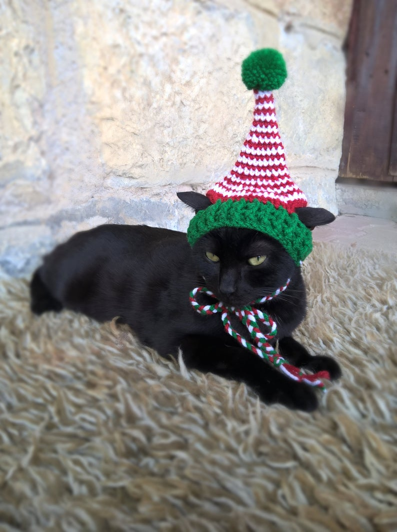 Elf cat costume