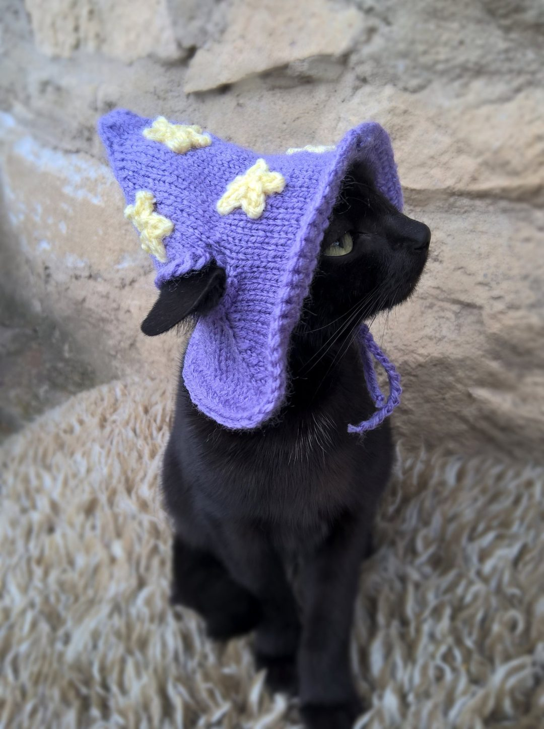 Purple witch hat Halloween costumes for cats