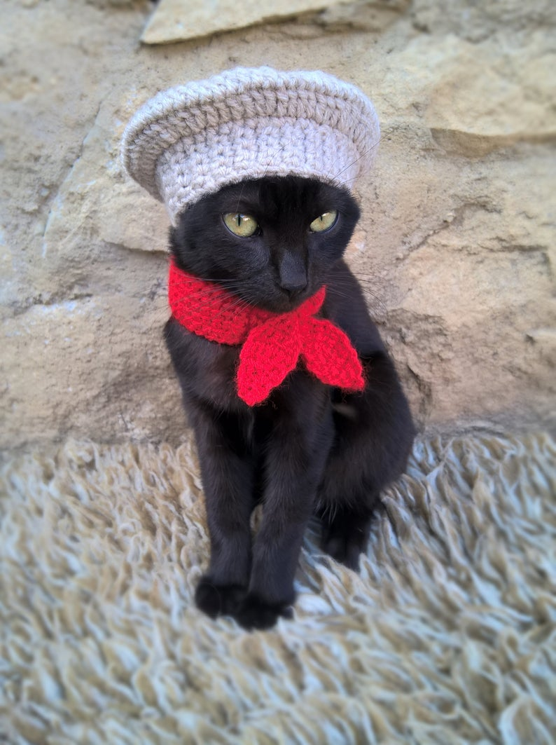French baker cat Halloween costumes
