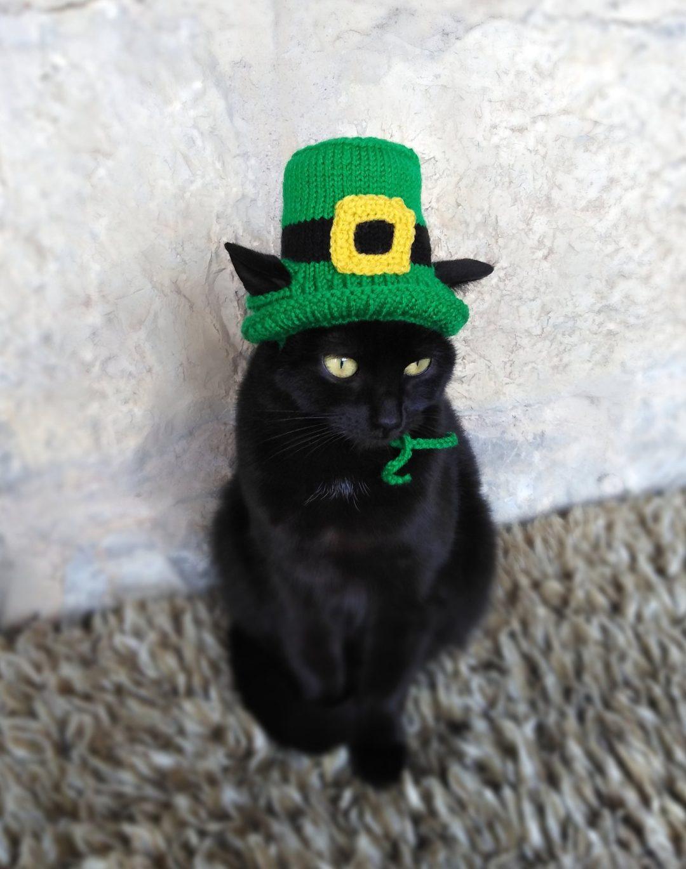 Leprechaun cat Halloween costumes