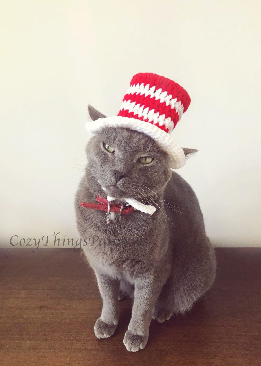 Cat In The Hat cat Halloween costumes