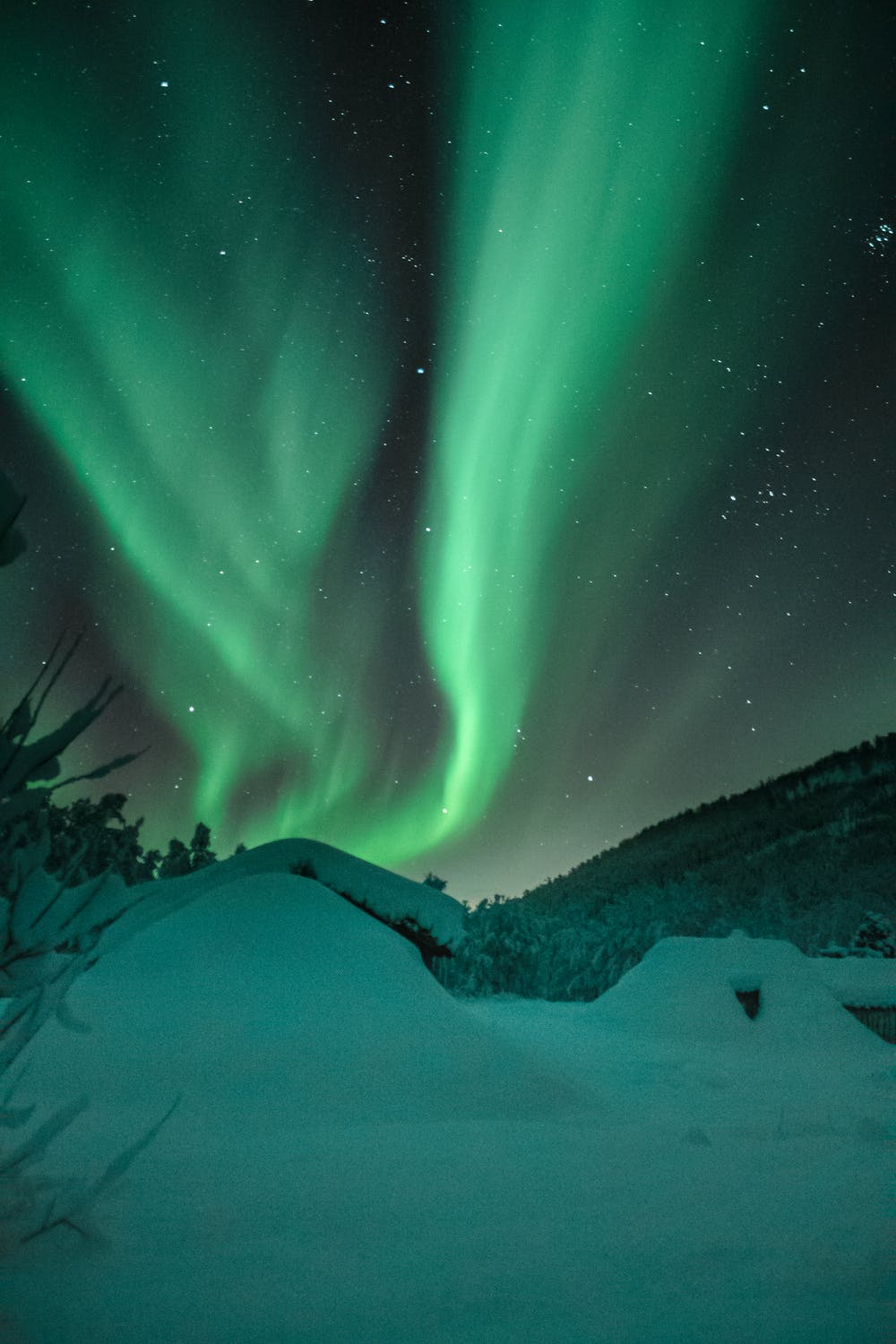 Green Northern lights wallpaper for iphone