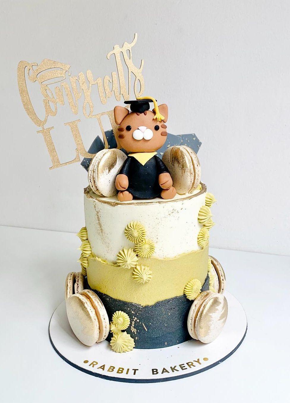 Cute graduation cake with cat