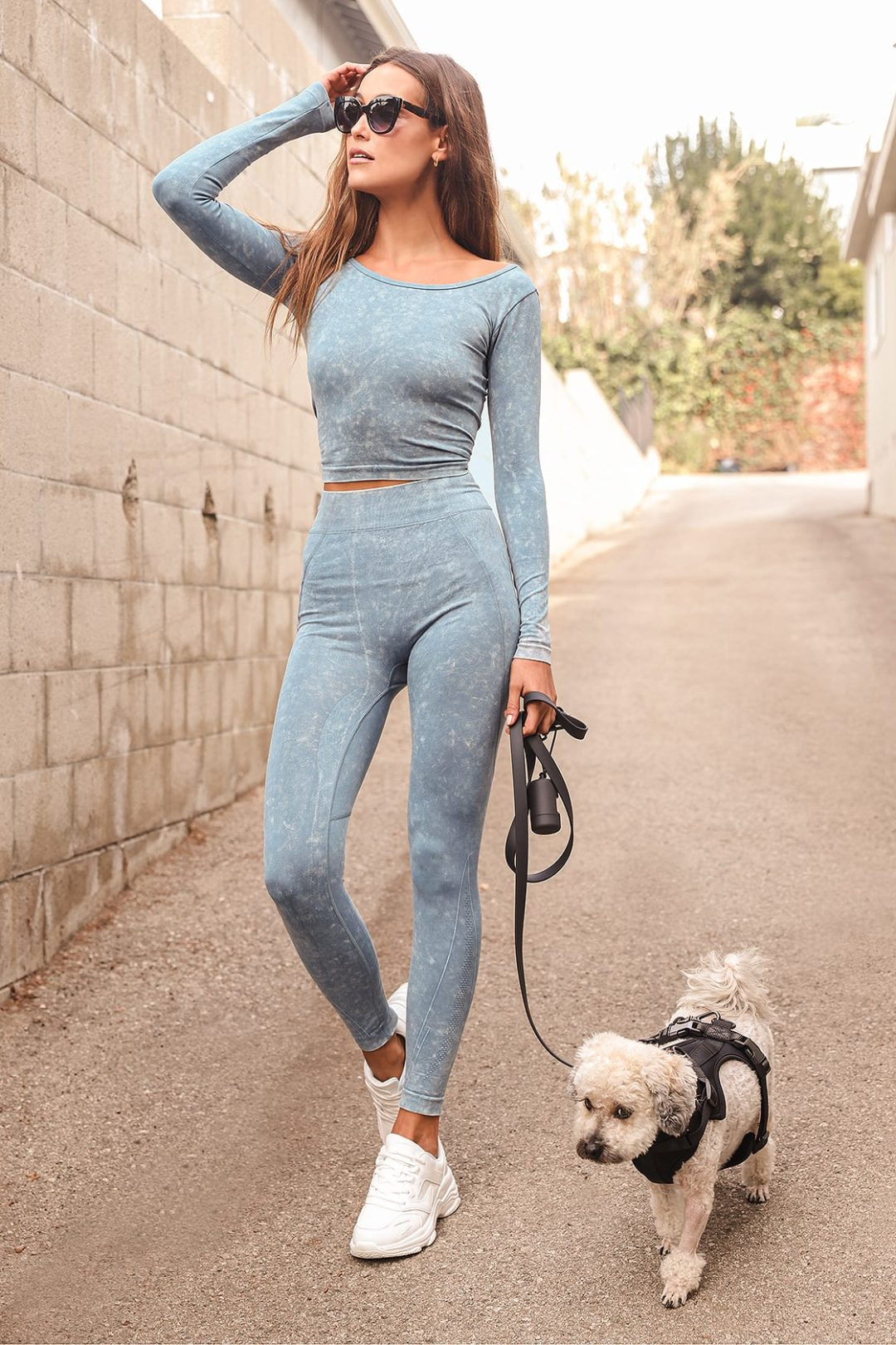 Cute dog walking outfits