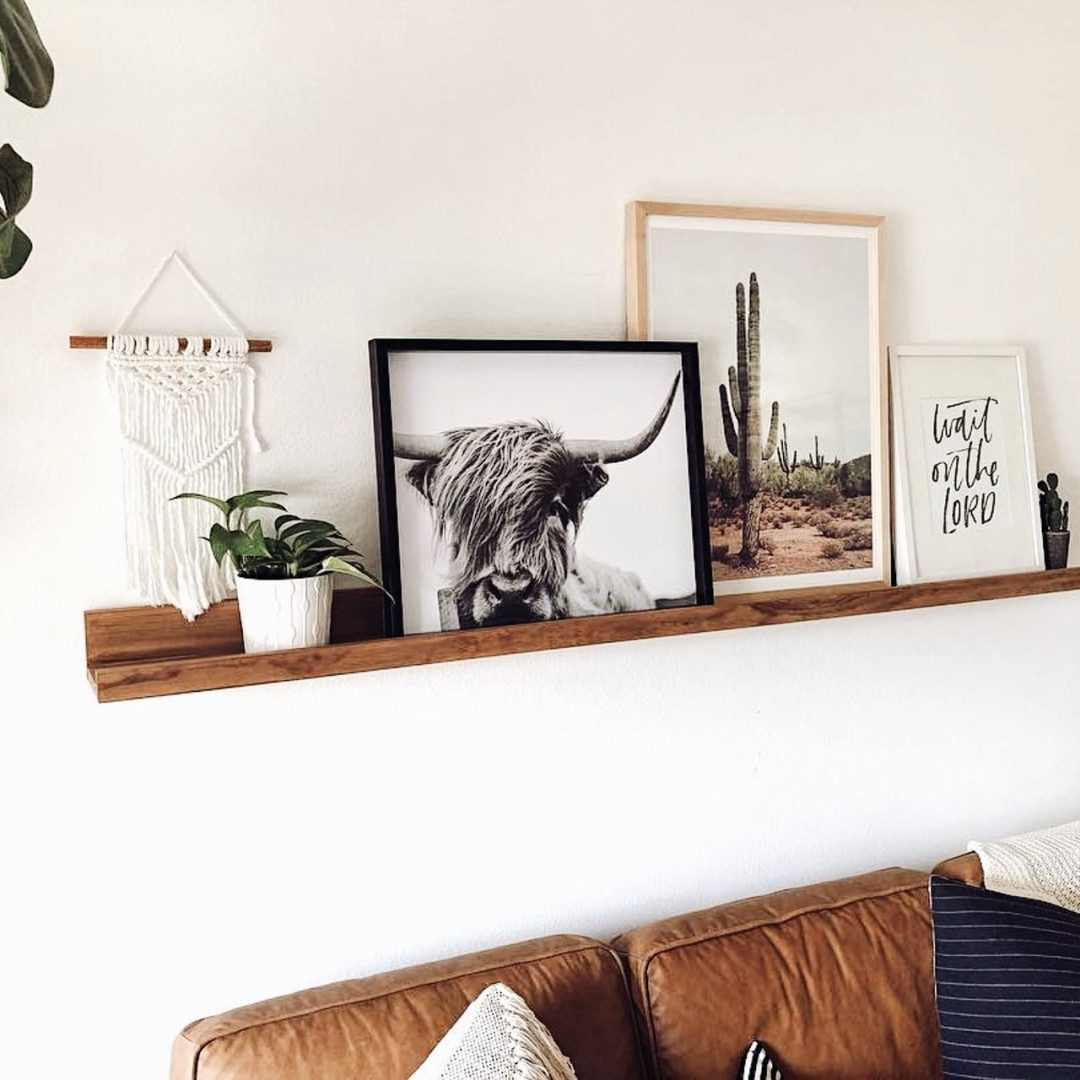 Trendy wall decor posters with bison