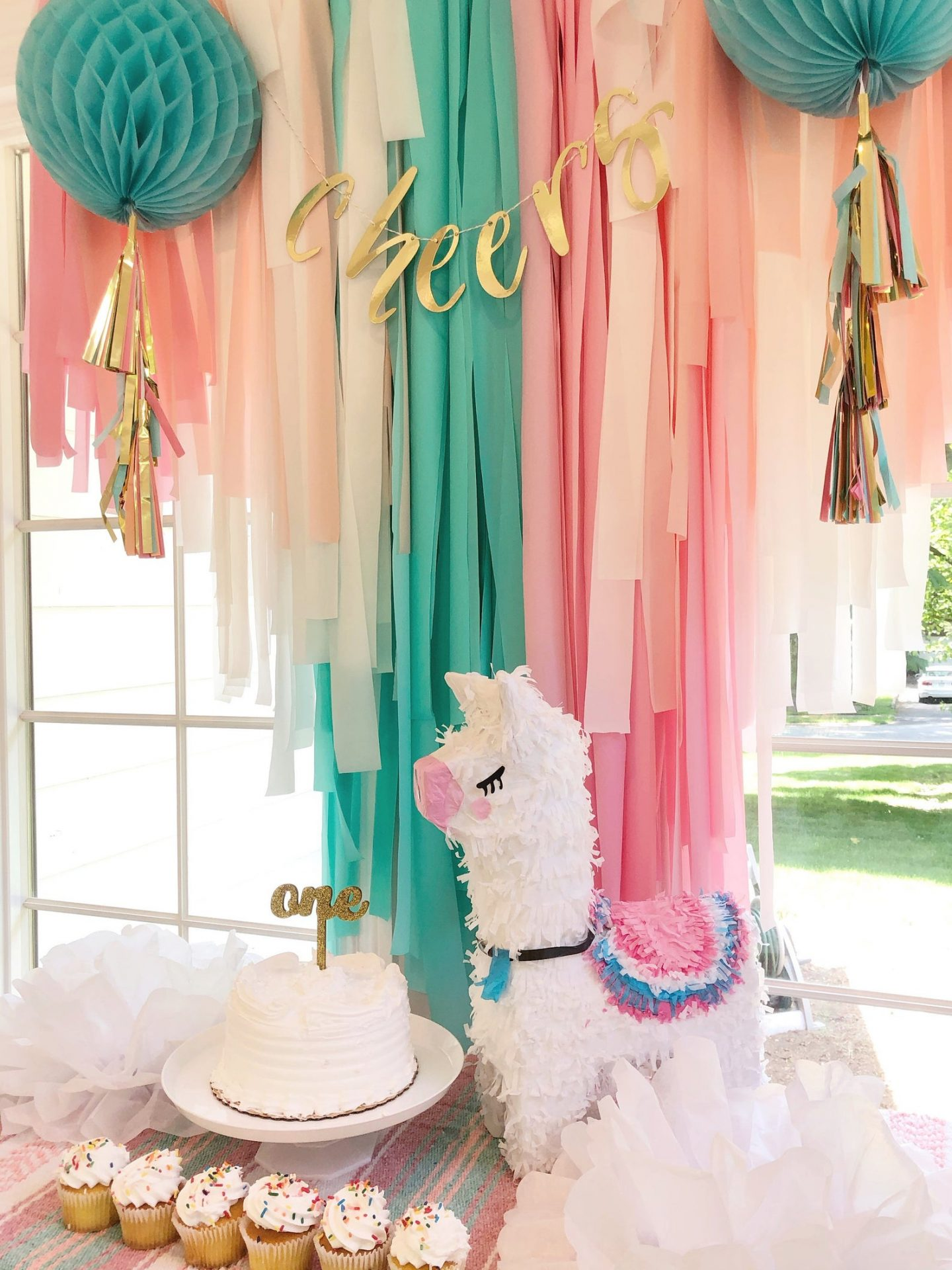 Turquoise and pink llama fringe curtain for a birthday party