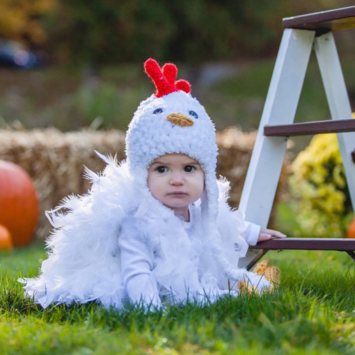 Cute feathered baby chicken Halloween costume