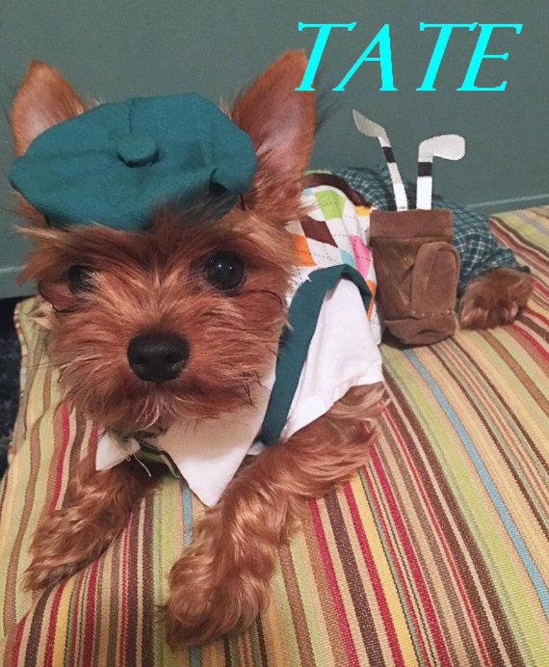 Cute golfer dog Halloween costume for small dogs
