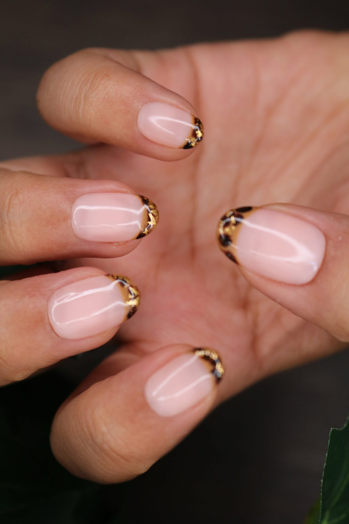 Cute tortoiseshell French tip nails with gold foil