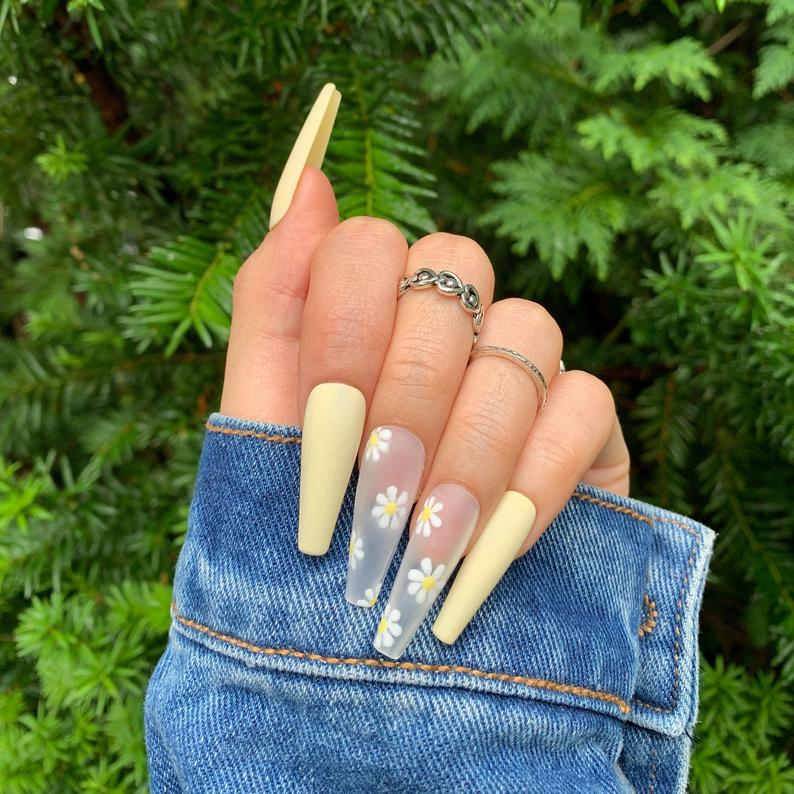 Daisy coffin nails