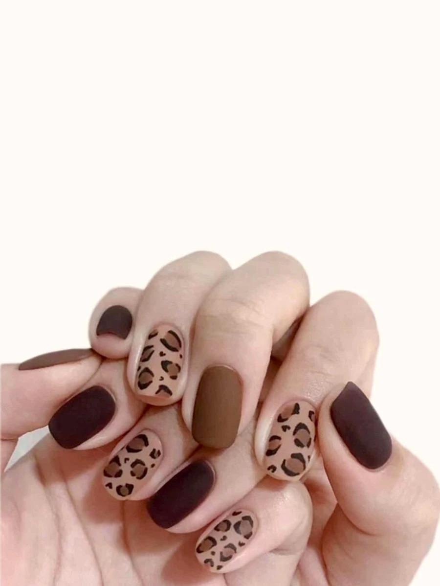 Short matte brown leopard print nails