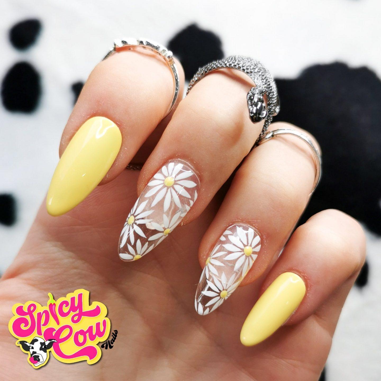 Pastel daisy nails
