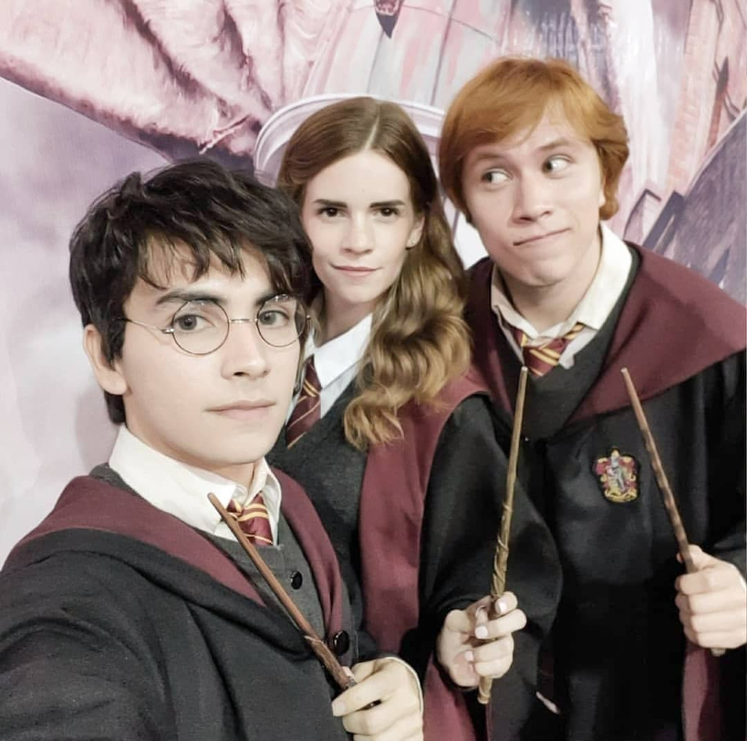 Harry Potter group for Best Trio Halloween Costumes