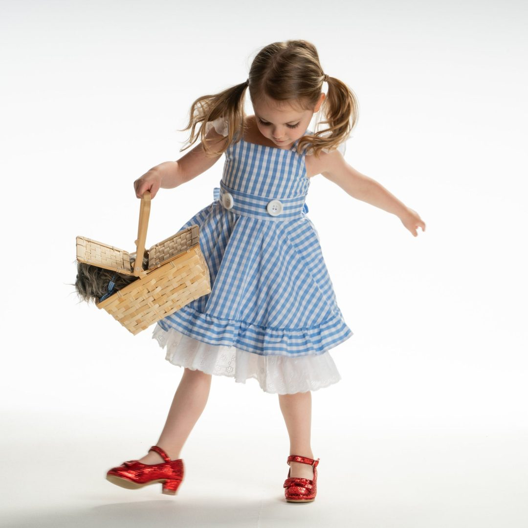 Dorothy from the Wizard of Oz for Toddler Halloween Costumes