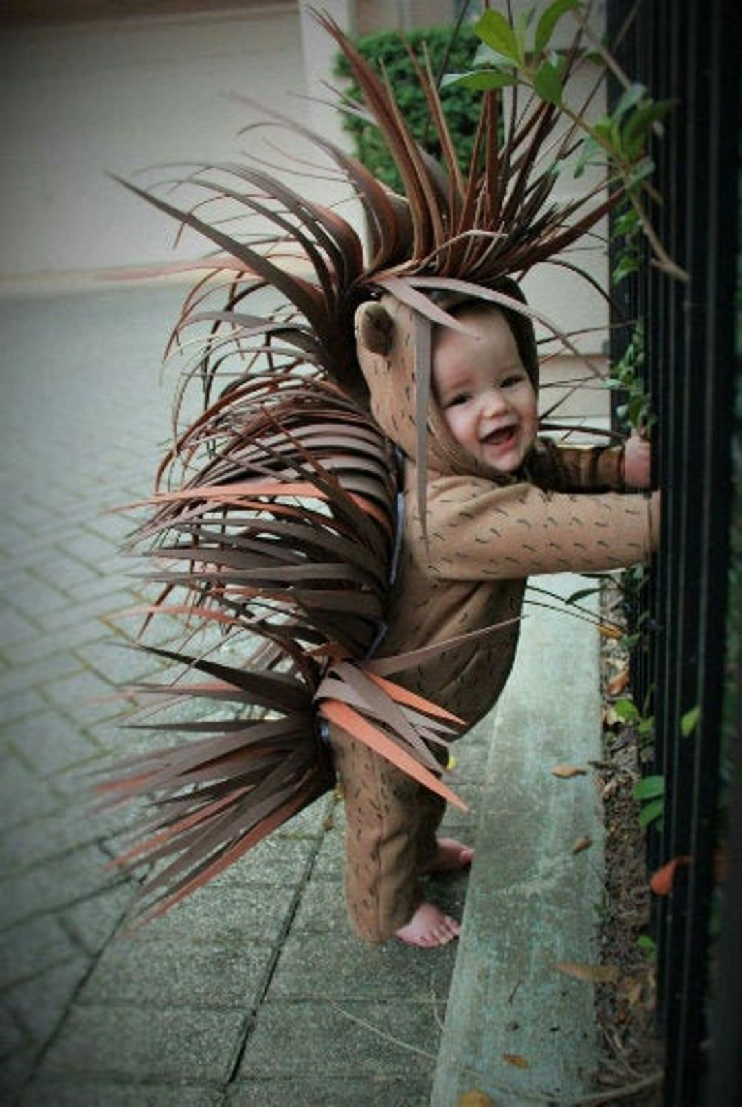 Baby Porcupine for Toddler Halloween Costumes