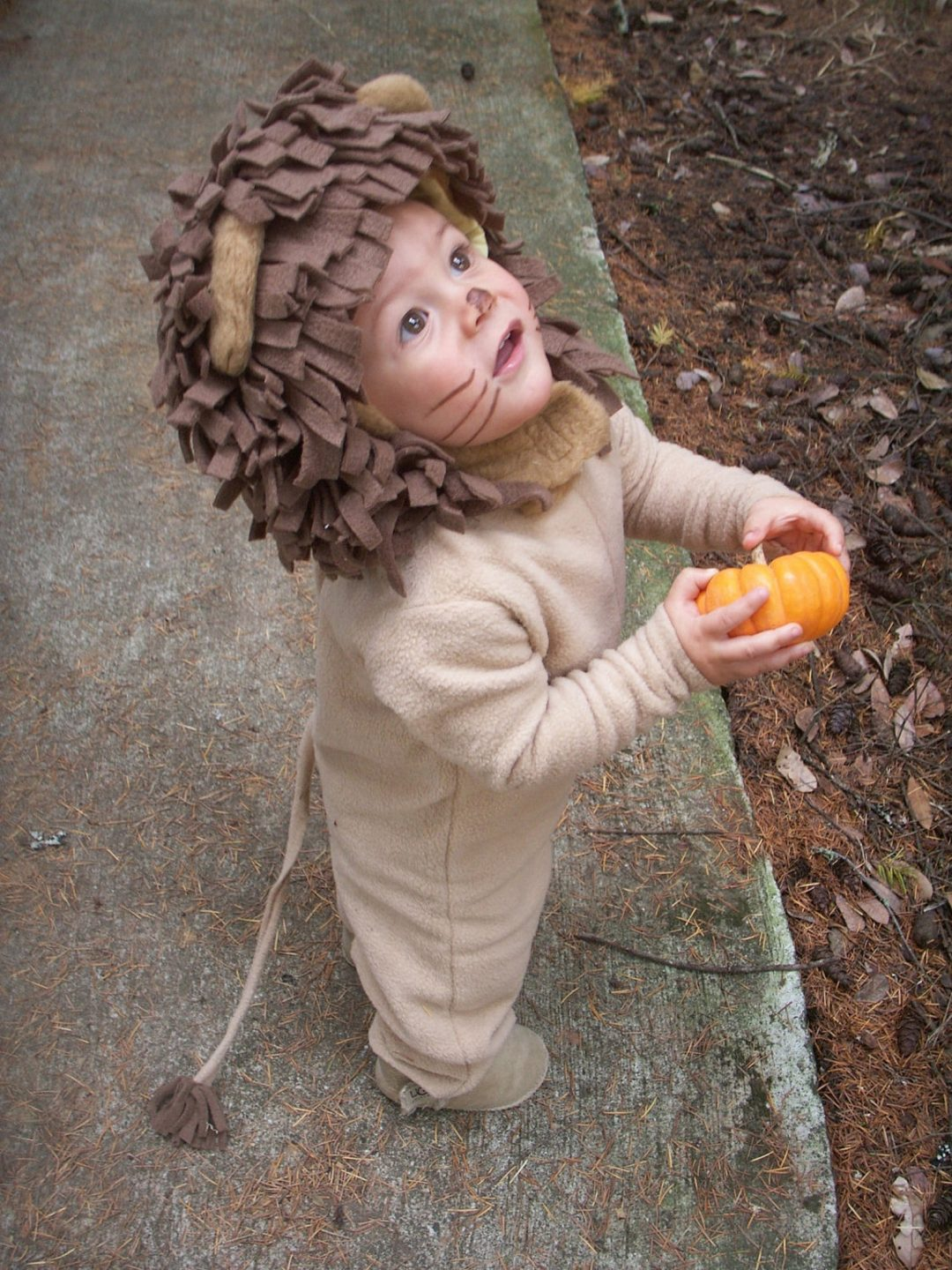Baby Lion for Toddler Halloween Costumes
