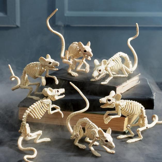 White Skeleton Mice for Best Indoor Halloween Decorations