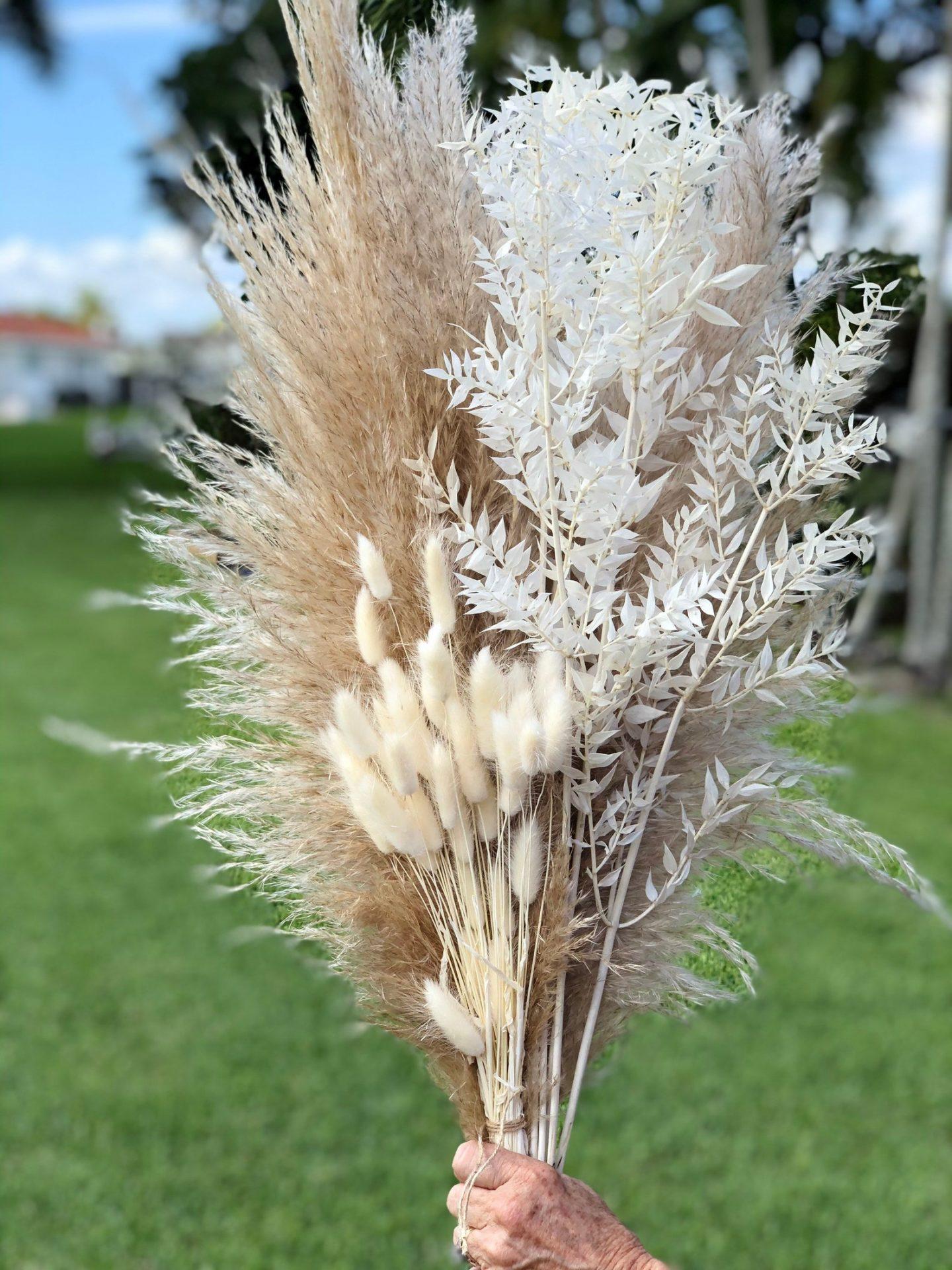 Pampas Boho Grass