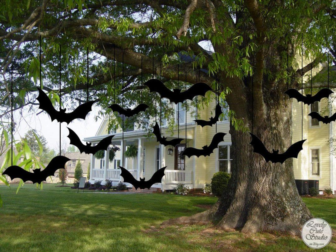 Hanging Black Bats