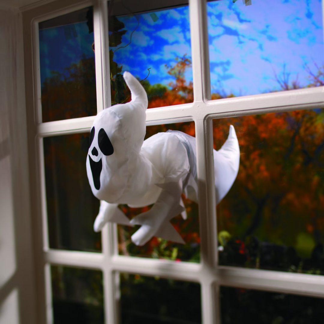 Ghost Breaking Through Window