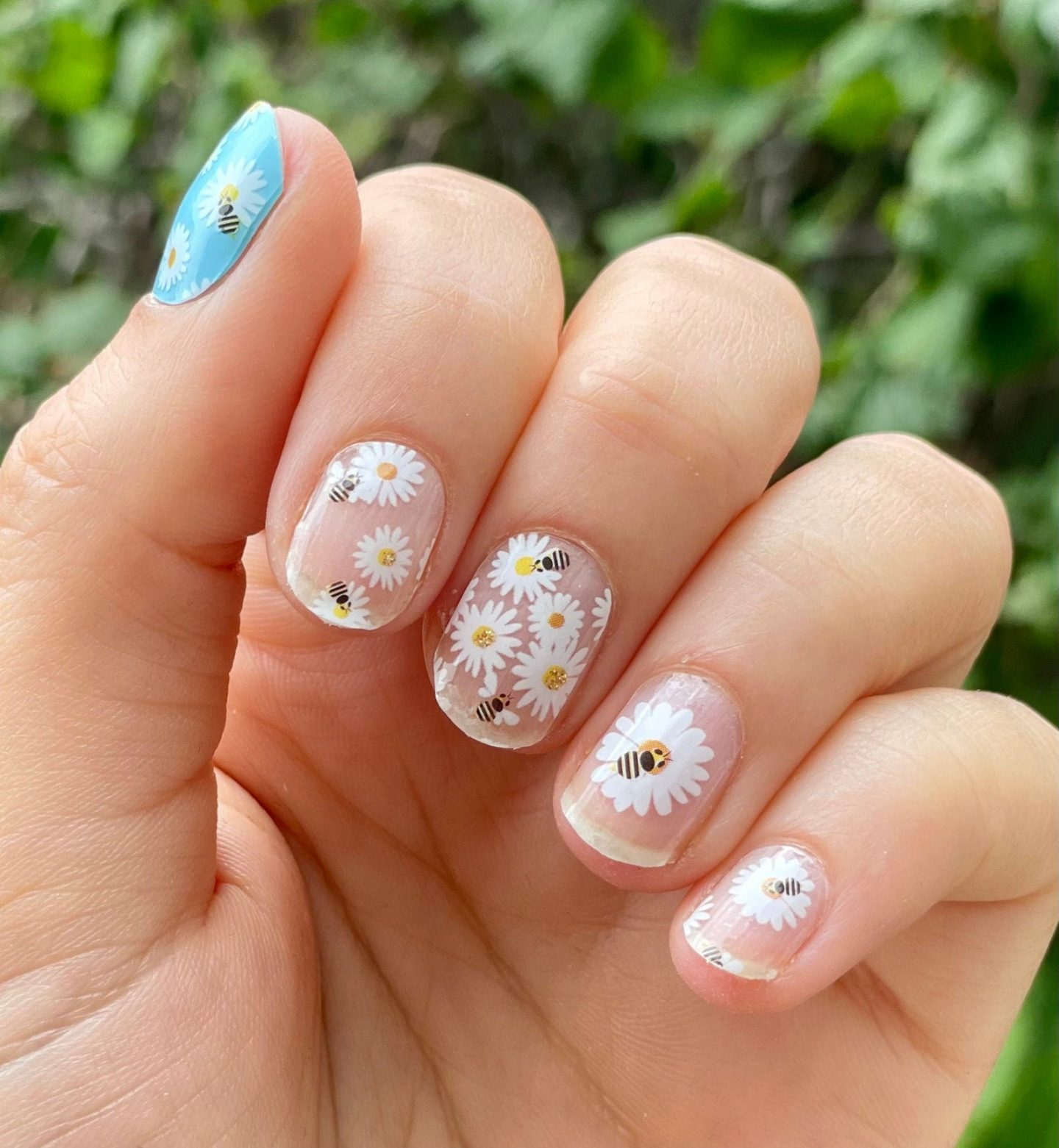 Cute short daisy nails with bees